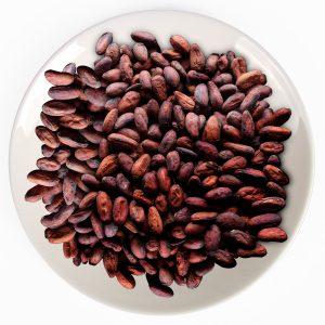 cacao bean whole sample